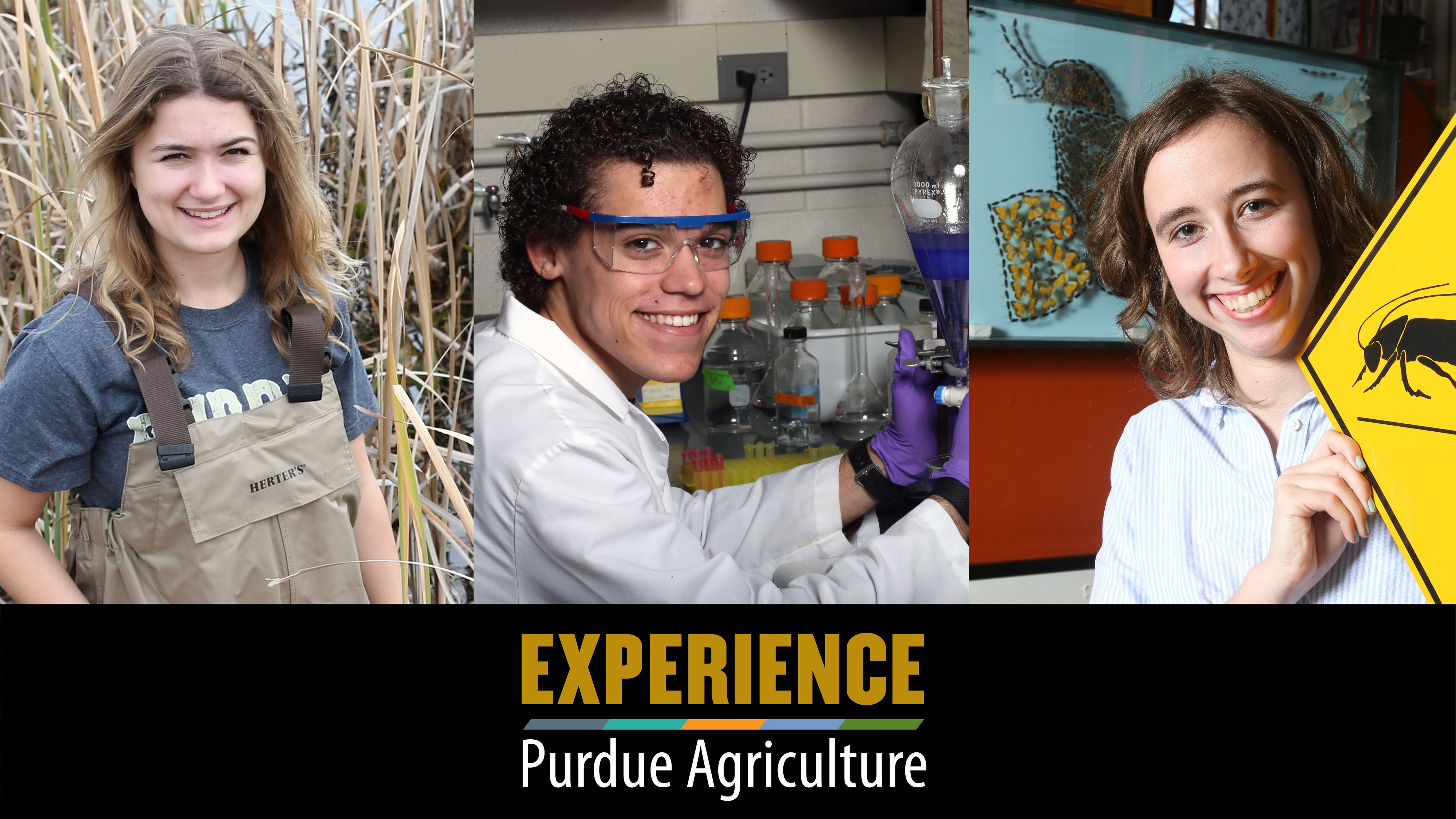 Experience Purdue Agriculture (photo)